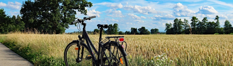Fahrradverleih Boltenhagen